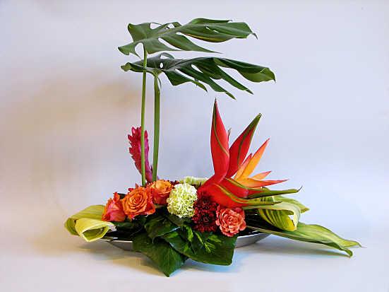 Flower Arranging By Chrissie Harten Design 305